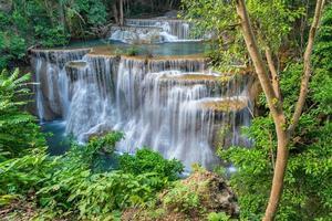 djup skog vattenfall