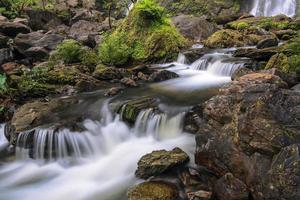 tropiskt vattenfall i djup skog foto
