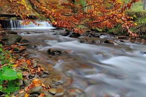 vattenfall i höstskogen foto