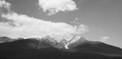 kanadensiskt landskap med berg och skog. alberta foto