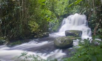 vatten faller i djup regnskog djungel