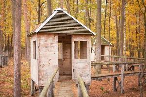 övergett litet hus i skogen foto
