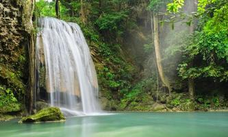 djupt regnskog vattenfall