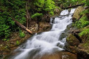 vackert vattenfall i skogen