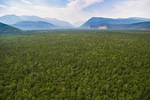 skogsdalen och bergen från luften