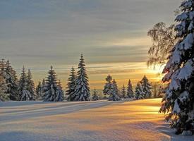 vinterkväll i Schwarzwald, Tyskland foto
