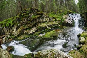 vattenfall i djup skog vid berg