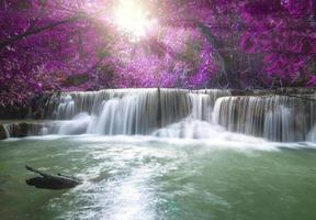 vackert vattenfall i djup skog med mjukt fokus foto
