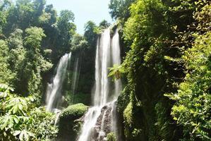 sekumpul vattenfall i bali foto