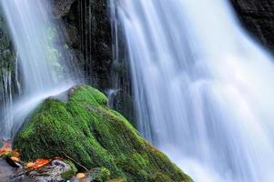 bergflod i höstskogen foto