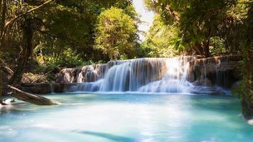 vacker djup skog blå ström vattenfall