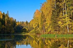 liggande färgglada höst skog sjö flod himmel moln foto