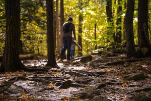 vandring i skogen foto