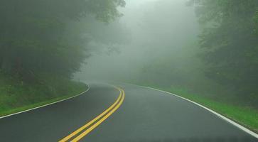 dimma på vägen foto