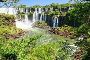 iguazu vattenfall, argentina foto