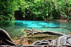 Blå lagun foto