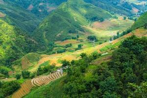 dalen bland risterrasserna.