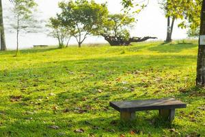 bänk på gräsmattan. foto