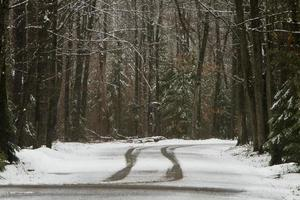 däckspår på snöig väg foto