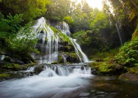 Panther Creek faller foto