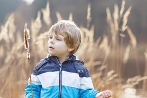 liten pojke att ha kul med bulrush nära skogsjön foto