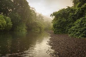 landskap av en flod i malaysia foto