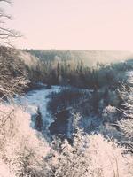 snöig vinterskoglandskap med snötäckta träd - retro foto