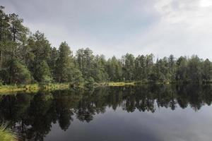 sjö i skog med reflektion av träd och himmel foto