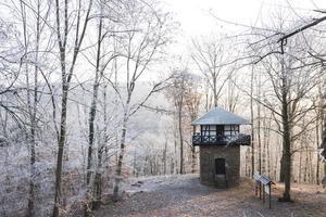 Tyskland, Rheinland-Pfalz, utsiktstorn och skog på vintern foto