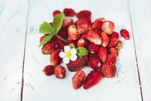 vilda jordgubbar foto
