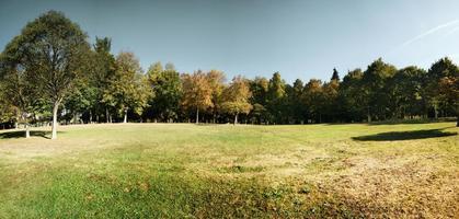 park av liten stad foto