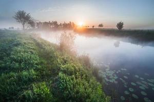 färgrik solnedgång på floden foto