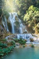 vackert vattenfall med mjukt fokus i skogen foto