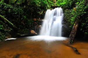 vattenfall vårsäsongen ligger i djup regnskog djungel. foto