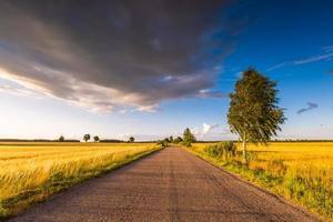 lantligt sommarlandskap med gammal asfaltväg