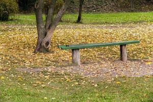träbänk i parken foto