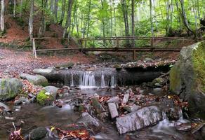 vacker vattenfall scen, ukrainska karpaterna shipot vattenfall foto