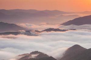 fantastiskt bergslandskap med tät dimma. Karpaterna.