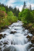 karpaterna. berget floden nära vattenfall shipot foto