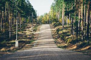 land grusväg i skogen. retro kornig film utseende.