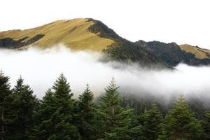 högbergslandskap med träd och moln foto