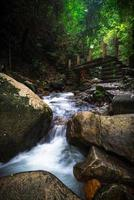 vattenfall i djungeln foto