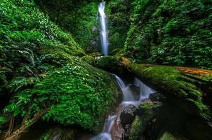Phasanngon vattenfall i Nakhon Nayok, Thailand. foto