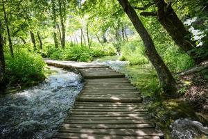 trävandringsled eller stig över vatten