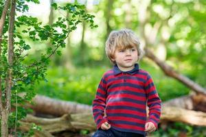 liten söt blond pojke som har kul i sommarskogen. foto