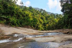 vattenfall i tropisk skog. bergsflod, stenar med mossa, t foto