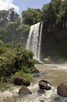 iguazu faller