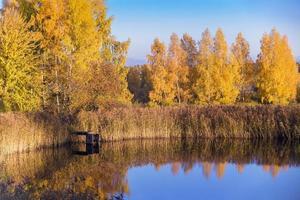 gångbro på ett vatten på hösten foto