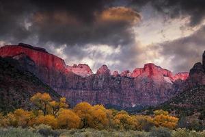 zion nationalpark på hösten foto