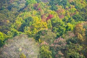 sikt av doi angkhang berg, Chiang Mai, Thailand